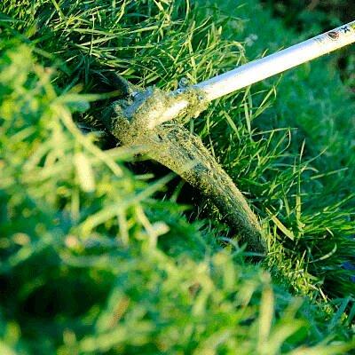 Desbrozadora bosch cortando el pasto