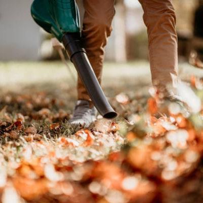 Soplador de hojas bosch
