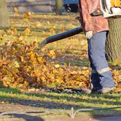 Utilizado el soplador de hojas