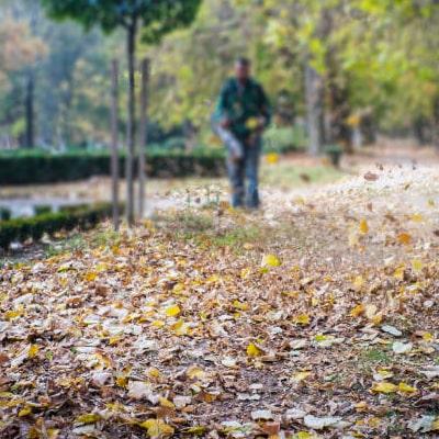 Hombre usando un soplador de hojas