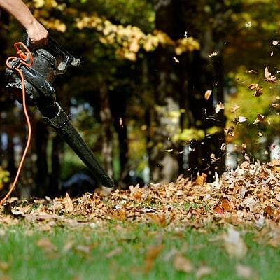 Mejor Soplador de hojas Bosch