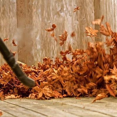 Soplando las hojas del jardín